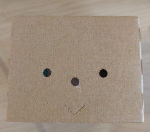 正しいエムボットの顔